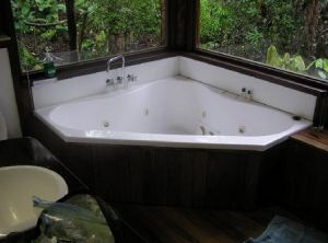 The Canopy Rainforest Tree Houses and Wildlife Sanctuary - Northern Rivers Accommodation