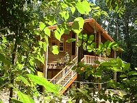 Rivers Edge Rainforest Retreat - Northern Rivers Accommodation