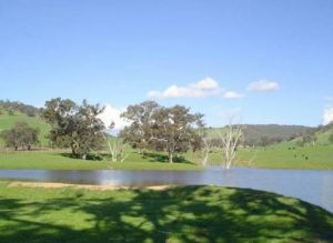 Hillview Farmstay - Northern Rivers Accommodation