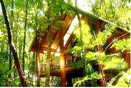 The Canopy Treehouses - Northern Rivers Accommodation