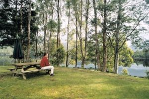 Tullah Lakeside Chalet - Northern Rivers Accommodation