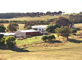 Sun Valley Eco Farm - Northern Rivers Accommodation