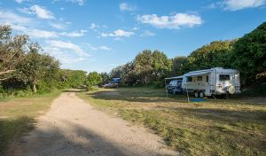Racecourse Campground - Northern Rivers Accommodation