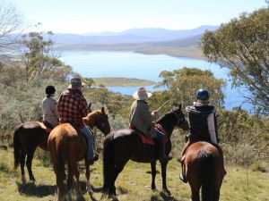 Reynella Homestead and Horseback Rides - Northern Rivers Accommodation