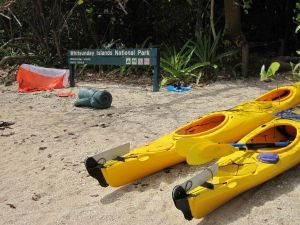 Molle Island National Park Whitsundays National Park Camping Ground - Northern Rivers Accommodation