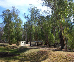 Balranald Caravan Park - Northern Rivers Accommodation
