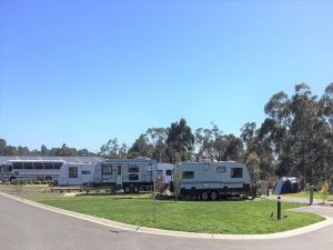 Lilydale Pine Hill Caravan Park - Northern Rivers Accommodation