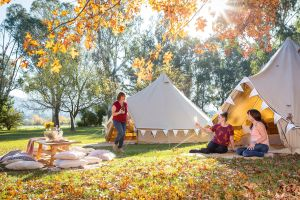 Valley View Glamping - Northern Rivers Accommodation