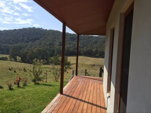 Highland Cattle Farm Stay - Northern Rivers Accommodation