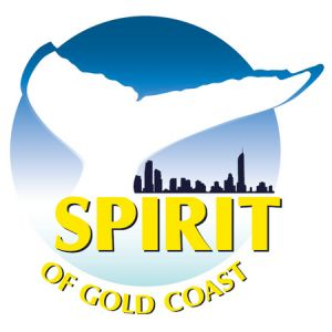 Spirit of Gold Coast Whale Watching - Northern Rivers Accommodation