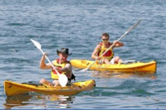 Manly Kayaks - Northern Rivers Accommodation