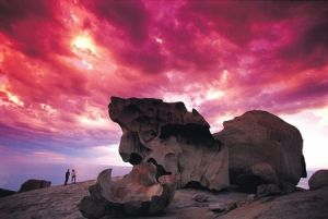 Kangaroo Island Adventure Tour 2 day/1 night - Northern Rivers Accommodation