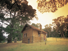 Heysen - The Cedars - Northern Rivers Accommodation