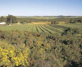 Chapman Valley Scenic Drive - Northern Rivers Accommodation