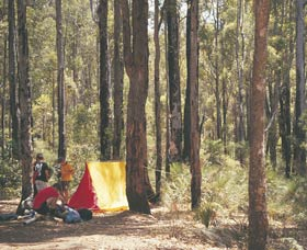 Lane Poole Reserve - Northern Rivers Accommodation