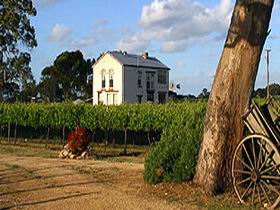 Highbank Vineyards - Northern Rivers Accommodation