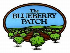 The Blueberry Patch - Northern Rivers Accommodation