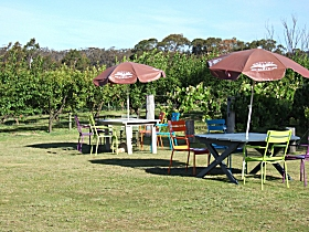 Cerise Brook Orchard  Family Golf - Northern Rivers Accommodation