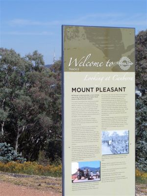 Mount Pleasant Lookout - Northern Rivers Accommodation