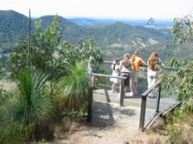 Mapleton Forest Reserve - Northern Rivers Accommodation