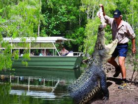 Hartleys Crocodile Adventures - Northern Rivers Accommodation