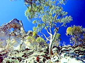 Mount Moffatt Section - Carnarvon National Park - Northern Rivers Accommodation