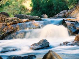 Crows Nest Falls - Northern Rivers Accommodation