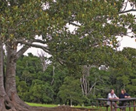 Ravensbourne National Park - Northern Rivers Accommodation