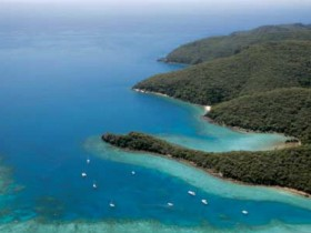 Butterfly Bay - Hook Island - Northern Rivers Accommodation