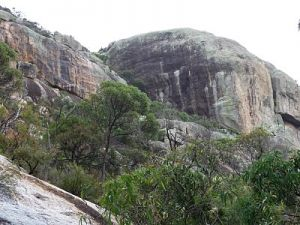 Mount Walsh National Park - Northern Rivers Accommodation