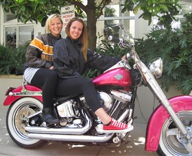 Wild Ride Harley and Motorcycle Tours - Northern Rivers Accommodation