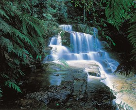 Leura Cascades - Northern Rivers Accommodation