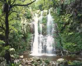 Budderoo National Park - The Falls Walk - Northern Rivers Accommodation