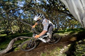 All Terrain Cycles - Northern Rivers Accommodation