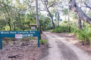 Deepwater National Park Camping Ground - Northern Rivers Accommodation