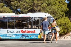 Rottnest Island Tour from Perth or Fremantle including Bus Tour - Northern Rivers Accommodation