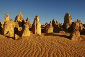 Pinnacles Day Trip from Perth Including Yanchep National Park - Northern Rivers Accommodation