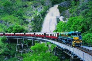 Full-Day Tour with Kuranda Scenic Railway Skyrail Rainforest Cableway and Hartley's Crocodile Adventures from Cairns - Northern Rivers Accommodation