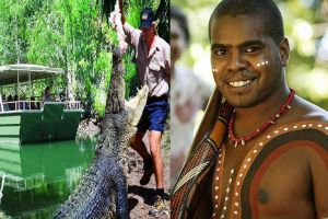 Hartley's Crocodile Adventures and Tjapukai Cultural Park Day Trip from Cairns - Northern Rivers Accommodation