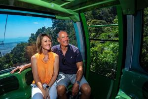 Skyrail Rainforest Cableway Day Trip from Palm Cove - Northern Rivers Accommodation