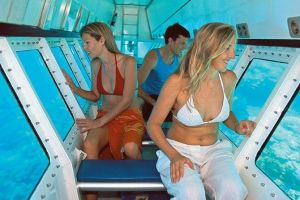 Quicksilver Outer Great Barrier Reef Snorkel Cruise from Palm Cove - Northern Rivers Accommodation