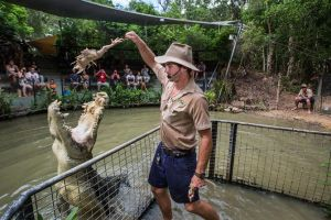 Hartley's Crocodile Adventures Day Trip from Cairns - Northern Rivers Accommodation