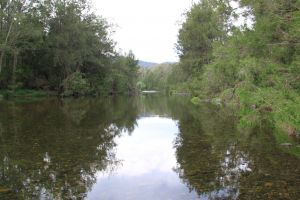 Riverside Campground and Picnic Area - Northern Rivers Accommodation