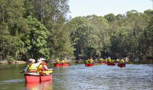 Bonville Creek - Northern Rivers Accommodation
