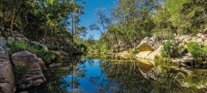 Crows Nest National Park - Northern Rivers Accommodation