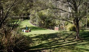 Leura Cascades picnic area - Northern Rivers Accommodation