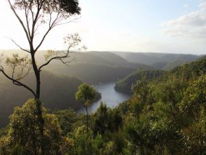 Berowra Valley National Park - Northern Rivers Accommodation