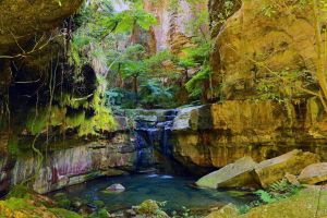 Glimpse of the Outback 5 Day Tour - Roma and Surrounds - Northern Rivers Accommodation