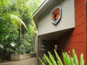 Minnamurra Rainforest Centre Budderoo National Park - Northern Rivers Accommodation