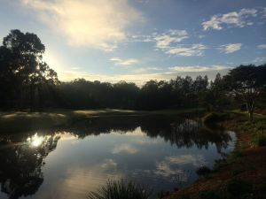Tallwoods Country Club - Northern Rivers Accommodation